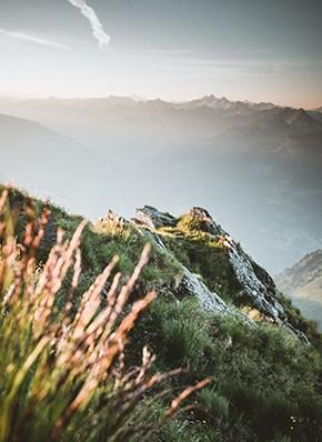 Sommer im Zillertal mit Blick auf die Berge